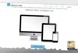 strona internetowa parallax