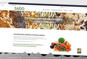 strony internetowe Sandomierz